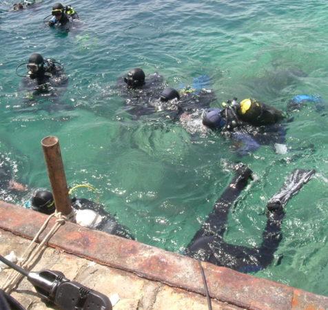 Endless Diving (365)