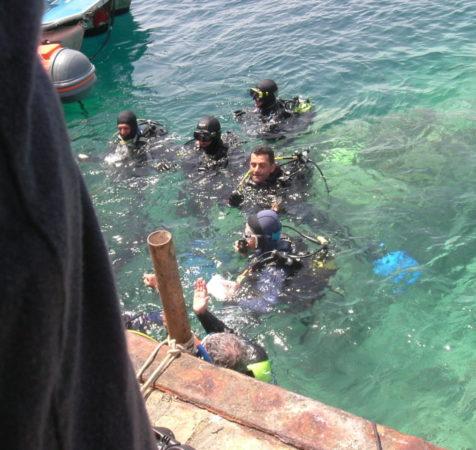 Endless Diving (366)