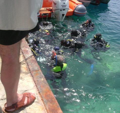 Endless Diving (367)