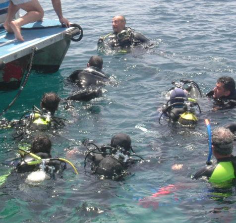 Endless Diving (372)